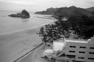 大浜海岸 1965(昭和40)年 県内自然保護活動、先駆けの地