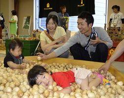 木のおもちゃで遊ぶ家族連れ=徳島市のアスティとくしま