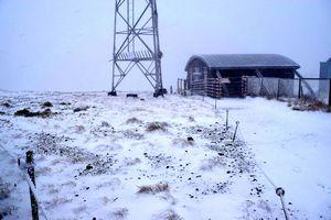 うっすらと雪化粧した剣山山頂=午前8時半ごろ、美馬市木屋平