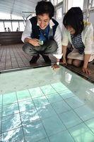 ガラスの床から渦を眺める観光客=鳴門市の渦の道