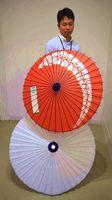 満1歳の記念品に加わった和傘=美馬市役所