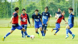 ボールを速く、大きく動かすことに主眼を置き、練習する徳島イレブン=徳島スポーツビレッジ