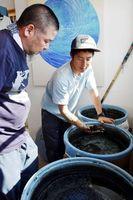 藍の染色作業の説明を受ける野老さん(左)=海陽町宍喰浦のイン・ビトウィーン・ブルース