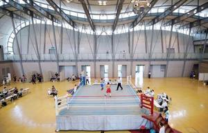 プロボクシングの国内興行が再開し、無観客で行われた中日本新人王の予選=12日、愛知県の刈谷市あいおいホール
