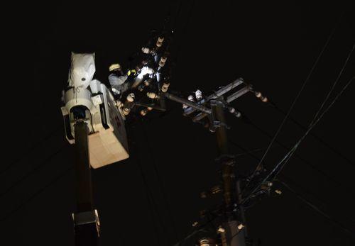 高所作業車を使ってカラスの巣を撤去する作業員=6日午後7時40分ごろ、小松島市神田瀬町
