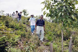 全国のシンボル木を植えた「棟の大師堂公園」を歩く住民ら=東みよし町東山