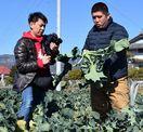 農業の魅力を動画でPR、若手新規参入へ 徳島・阿波市