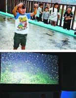 【上】入水して魚と触れ合えるタッチングプール【下】4Kの映像が楽しめるシアタールーム=海陽町宍喰浦のマリンジャム