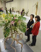 合同茶会いけばな展で、鮮やかな作品に見入る来場者=吉野川市文化研修センター