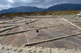 弥生前期最大の水田跡、奈良