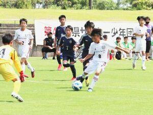 開幕した県サッカ-少年団大会で激しい攻防を繰り広げる選手たち=徳島市球技場