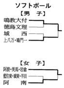 第73回徳島県中学総体 ソフトボール7月15日の結果