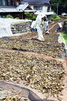 茶葉を天日干しする生産者=昨年7月下旬、那賀町大久保
