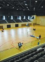 広々としたアリーナでバスケットボールをする利用者