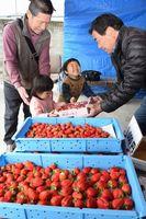 直売所でイチゴを買い求める家族連れ(左の3人)=阿波市土成町吉田