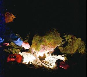 美波町の大浜海岸に今年初めて上陸し、産卵したアカウミガメ=11日午後10時40分ごろ、同町日和佐浦