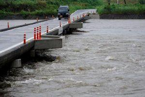 台風5号の影響で増水した鮎喰川=7日午前10時半、徳島市春日