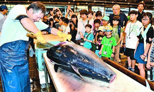 マグロの解体に見入る小中学生=徳島市中央卸売市場