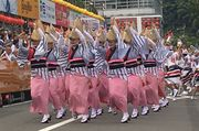 徳島市の阿波踊り「納付金」500万円 民間委託で義務付け 実行委、仕様書を公表