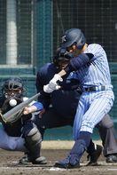 徳島北と城西が8強入り 高校野球春季徳島大会(複数…