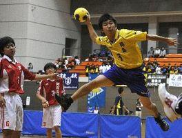 県高校総体が開幕し、ハンドボールで白熱した試合を繰り広げる選手たち=鳴門アミノバリューホール
