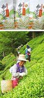 【上】南投世界茶業博覧会に出品される歩危銘茶【下】南投世界茶業博覧会に出品される天空ノ山茶を摘み取る生産者ら=三好市山城町上名