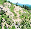 剣山山系の土壌浸食空撮 三嶺守る会が報告書