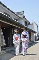 うだつの町並みを散策する佐藤さん(右)と妹尾さん=美馬市脇町