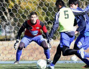 チームに合流し、実戦形式の練習に取り組む徳島の杉本(左)=宮崎市の県総合運動公園ラグビー場