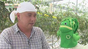 情報番組「阿波ベジもりもり」の一場面。キャラクターのレタススム君が生産者を訪ね、市産野菜を紹介している(ACN提供)