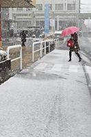 雪が舞う中、足早に歩く買い物客ら=午前9時すぎ、三好市池田町サラダの商業施設