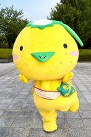 徳島県勢として過去最高の総合11位に入った「ゆずがっぱ」