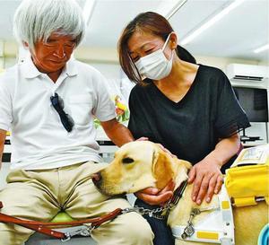 白杖歩行困難者と盲導犬エヴァン=徳島市沖浜東1の徳島の盲導犬を育てる会