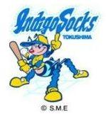 徳島インディゴ、4月2日開催予定のオープン戦中止