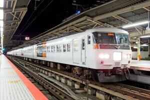 運転終了が決まった夜行列車の快速「ムーンライトながら」(JR東日本提供)