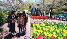 脇町のデ・レイケ公園でチューリップまつり 家族連れ…