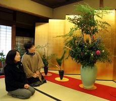 新年の華やかなムードに包まれた陣原さんの社中展=徳島市の阿波十郎兵衛屋敷