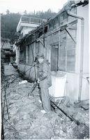 阪神大震災の揺れで瓦が落ちた民家。県内でも多くの被害をもたらした=1995年1月17日、鳴門市