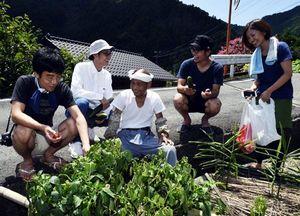 平岡さん(中央)と談笑しながら収穫を楽しむ参加者=上勝町旭