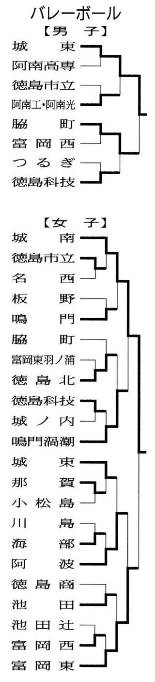 徳島県高校総体バレー 男子は城東、女子は城南が優勝