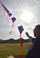 連凧を揚げる参加者=鳴門ウチノ海総合公園