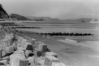 八木の鼻(鳴門市)1965(昭和40)年 大鳴門橋開通で景色に変化