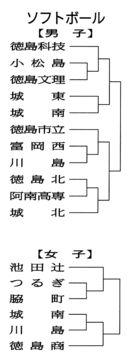 【県高校総体 ソフトボール】 男子・徳島科技が最有…