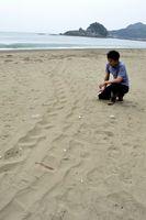初上陸が確認されたアカウミガメの足跡=午前9時40分、美波町日和佐浦の大浜海岸