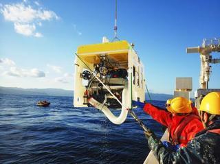 海底生物を捕る自動ロボ開発