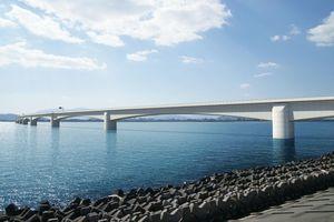 西日本高速道路が吉野川河口に建設を予定している橋の完成イメージ(同社提供)