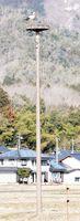 兵庫県立コウノトリの郷公園(豊岡市)にある人工巣塔。鳴門市大津町にも整備される=2月27日、同県豊岡市