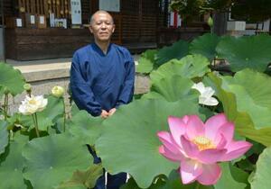 盛松寺の住職の高橋成明さんと見頃を迎えたハスの花=24日、大阪府河内長野市