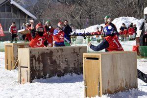 雪合戦大会で雪球をぶつけ合う選手=三好市東祖谷菅生のいやしの温泉郷グラウンド