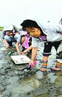 生き物を探す子ども=徳島市の吉野川河口干潟